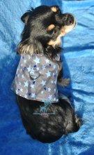Hunde Softgeschirr Boy Sterne Grau Blau Strass cool Chihuahua