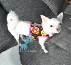 Chihuahua Hunde Softgeschirr Sugar Skulls Totenköpfe bunt